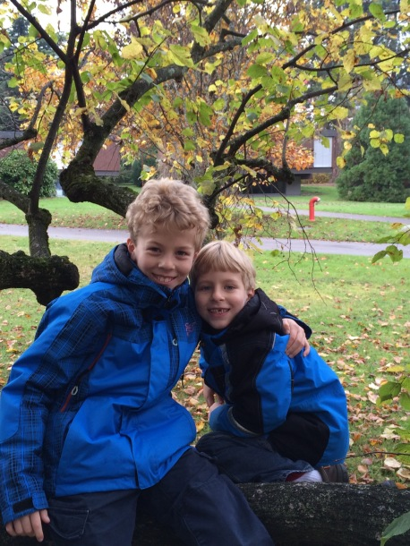 My boys sitting in a tree having a great time.