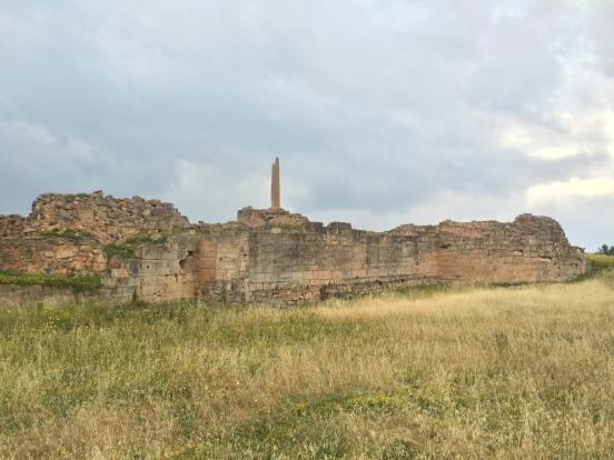 Aegina 5